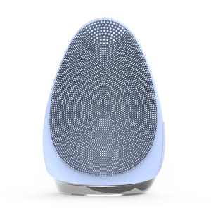 Factory Price Facial Cleansing Brush Home Beauty